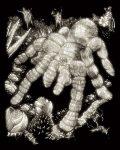 Képkarcoló készlet karctűvel - 20x25 cm - Világítós - Tarantula