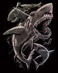 Képkarcoló készlet karctűvel - 20x25 cm - Holografikus - Cápák