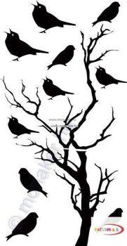 Fekete falmatrica - Madarak ülnek a fán