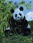 Kifestő készlet vászonra, akrilfestékkel, ecsettel, gyerekeknek 8 éves kortól - 23x30 cm - Panda