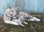Kifestő készlet akrilfestékkel, ecsettel, gyerekeknek 11 éves kortól - 30x40 cm - Fehér tigris a ködben