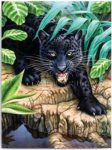 Kifestő készlet akrilfestékkel, ecsettel, gyerekeknek 8 éves kortól - 20x25 cm - Fekete leopard