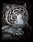 Képkarcoló készlet karctűvel - 20x25 cm - Ezüst - Fehér tigris