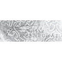 Holografikus papír - Ezüst Fantázia