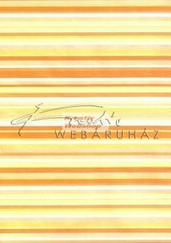 Transzparens papír - Vonalas