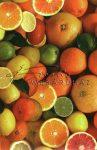 Transzparens papír - Citrus