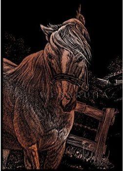 Kreatív hobby - Réz - Ló