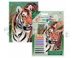 Számozott színező készlet, mini - Tigris