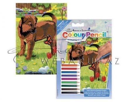 Számozott színező készlet, mini - Kutya