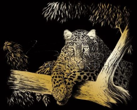 Kreatív hobby - Képkarc készlet - Arany - Leopárd