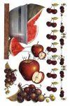 Gyümölcsök dec.transz