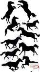 Fekete falmatrica - Lovak - Állatos, lovas #18