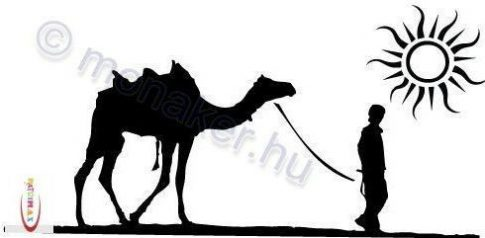 Fekete falmatrica - Sivatagi kép - Állatos #83