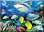 Kifestő készlet akrilfestékkel, ecsettel, gyerekeknek - 30x40 cm - Számos kifestő készlet - Cápák a korallzátonynál