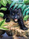 Kreatív kifestő, számos - Fekete leopard