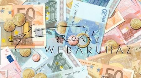Euró bankjegy és érme mintás, Karton