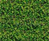 Kartonpapír - Zöld fenyőágak mintás, Karton